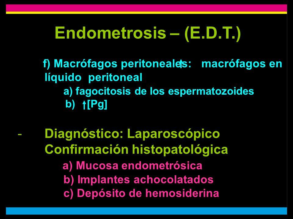 Endometrosis – (E.D.T.) f) Macrófagos peritoneales: macrófagos en líquido peritoneal a) fagocitosis de los espermatozoides b) [Pg]